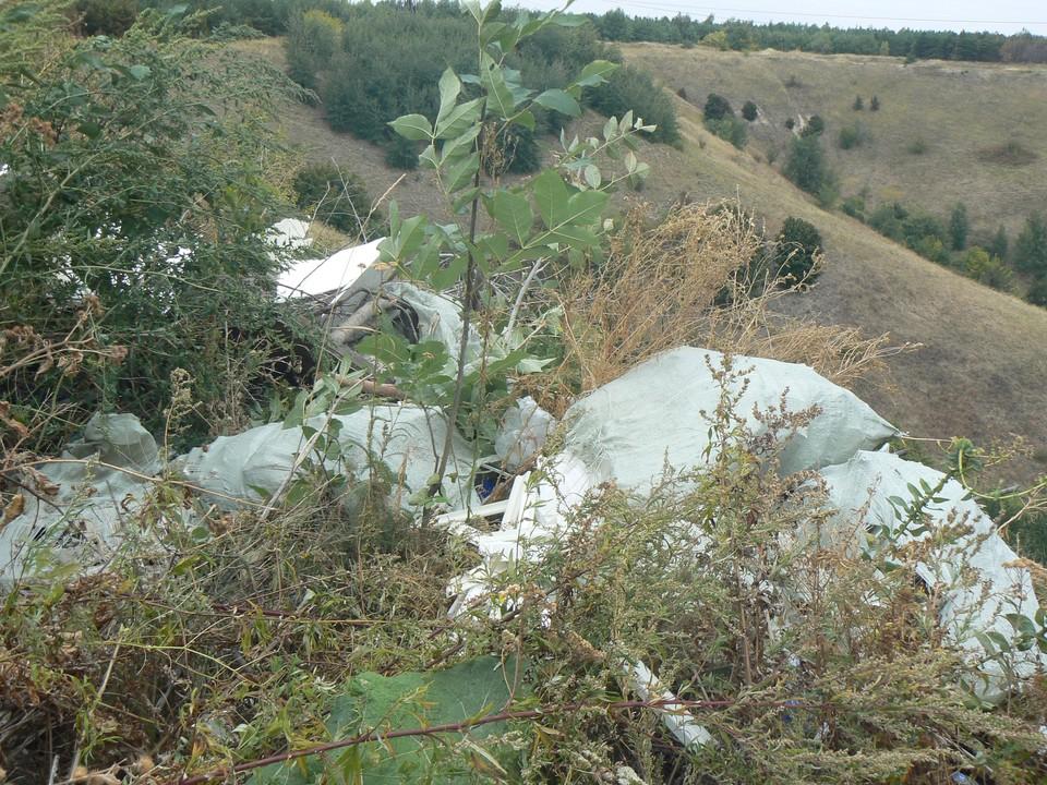 Мусор на территории Кумысной поляны