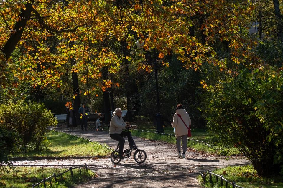 Тепло и солнечно будет в Петербурге 10 сентября