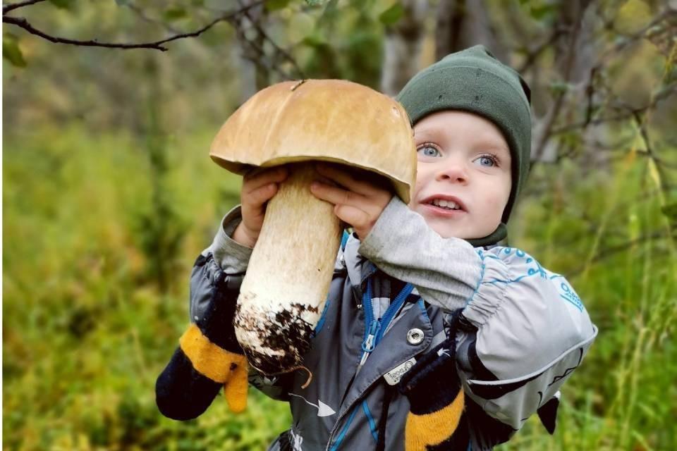 Огромный белый гриб для малыша. Фото: Надежда Новикова