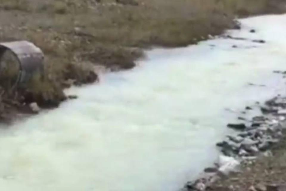 """Тайну """"молочной реки"""" выяснили в Бурятии. Фото: скрин с сайта Бурприроднадзора."""