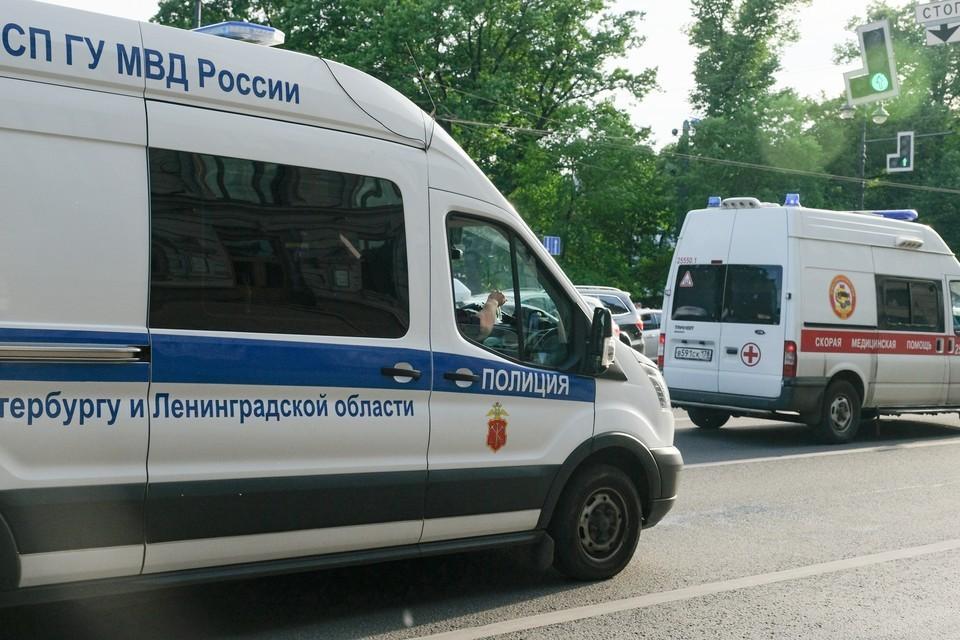 Тело женщины с ножевыми ранениями нашли в одном из лесных массивов Петербурга.