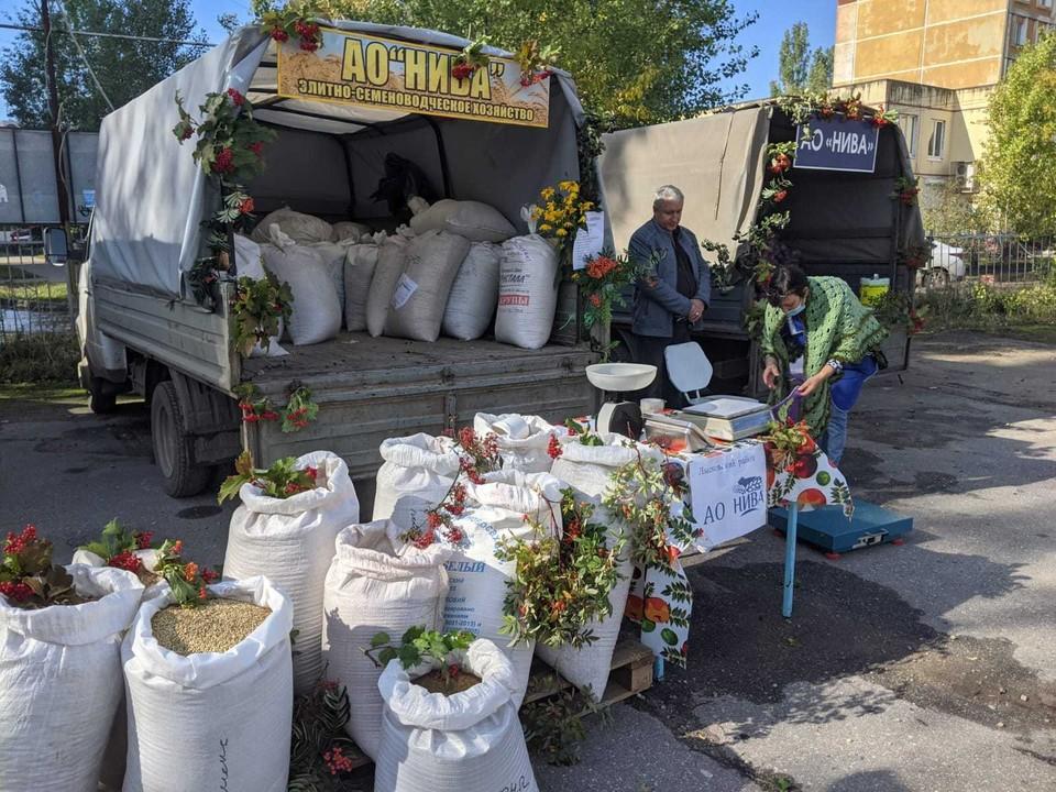 Сельскохозяйственные ярмарки работают в Нижнем Новгороде 11-12 сентября