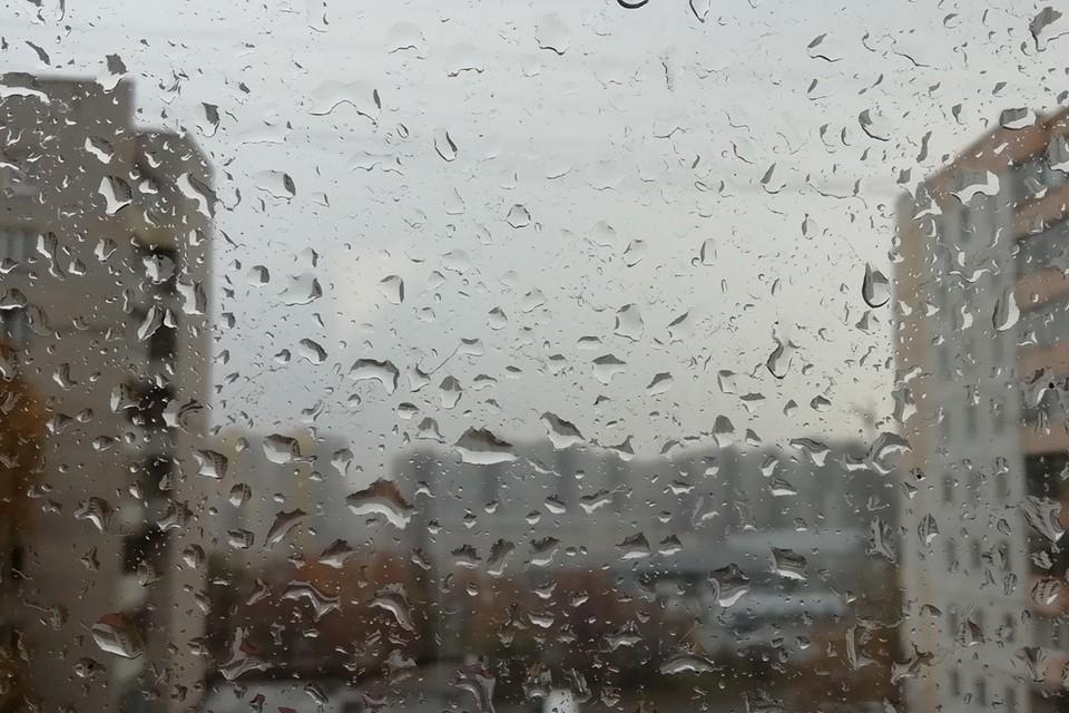 Дожди также будут продолжать идти