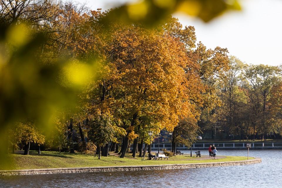 Осень предстанет во всей красе.