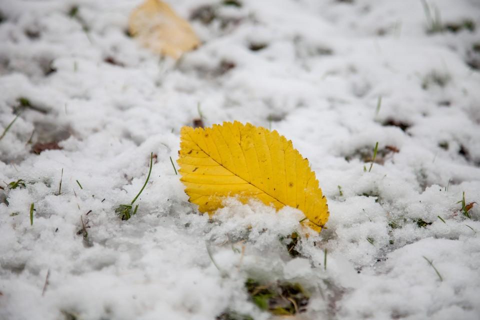 В Кузбассе выпал первый снег в выходные.