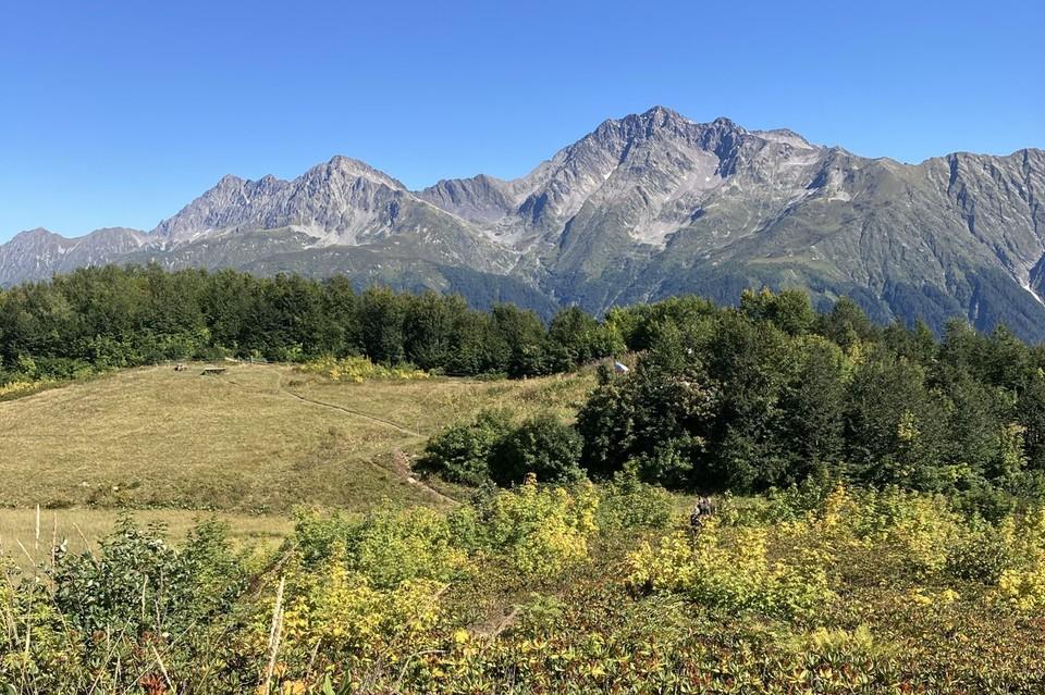 Фото: Кавказский биосферный заповедник