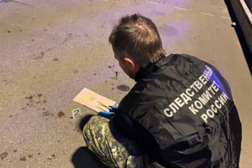 22-летнего сибиряка задержали в Москве по подозрению в зверском убийстве врача-рентгенолога. Фото: ГСУ СК России по Москве