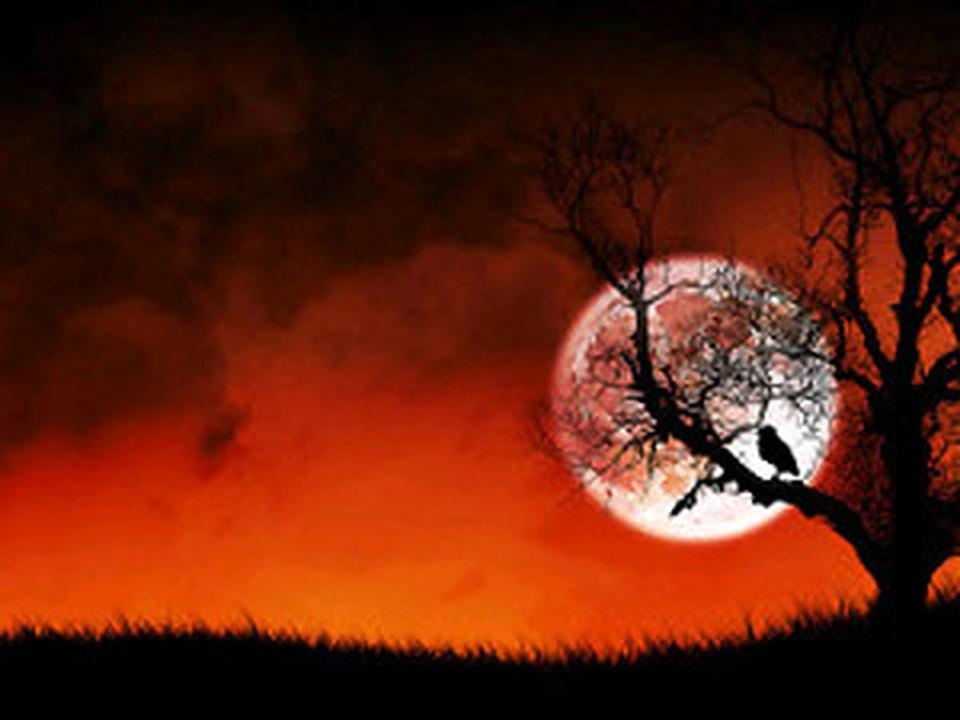 Вальпургиева ночь отмечается ночью с 30 апреля на 1 мая