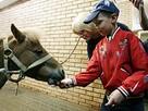 Дети покормили президентских лошадей
