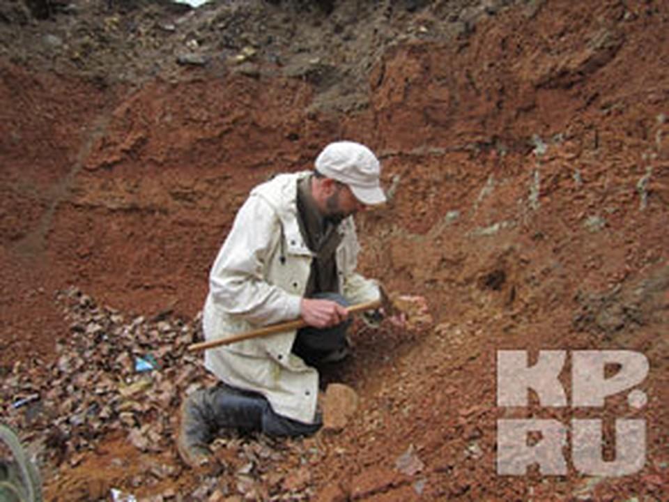 В центре Нижнего археологи раскопали останки амфибии.