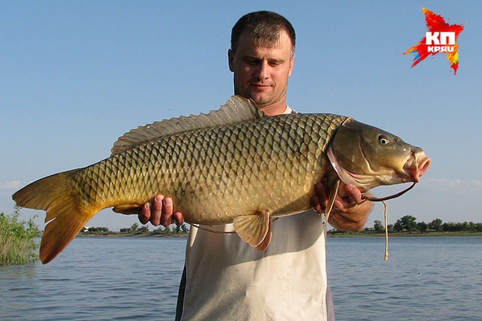 - Чтоб попалась рыба эта, я гонял за ней все лето!