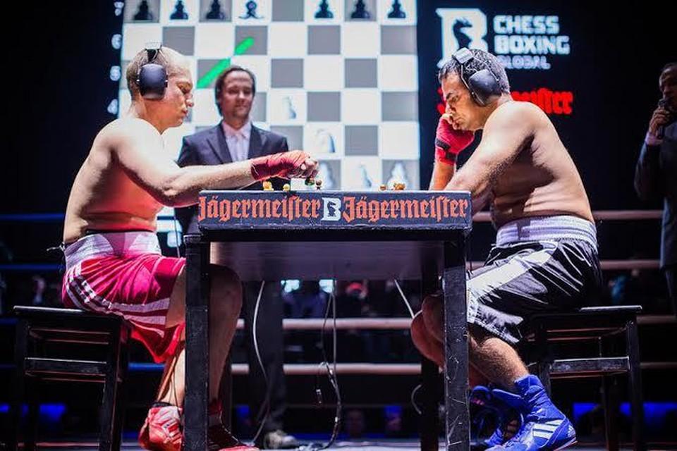 В Москве впервые состоялся Чемпионат мира по шахбоксу