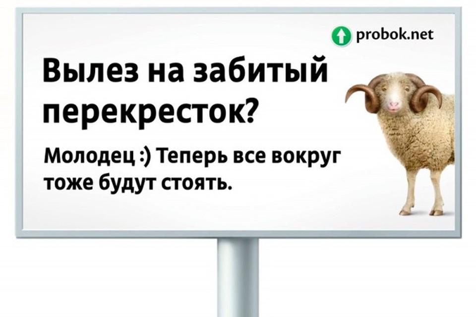 """Активисты портала """"Пробок.нет"""" собираются бороться за культуру на дорогах оригинальным способом"""