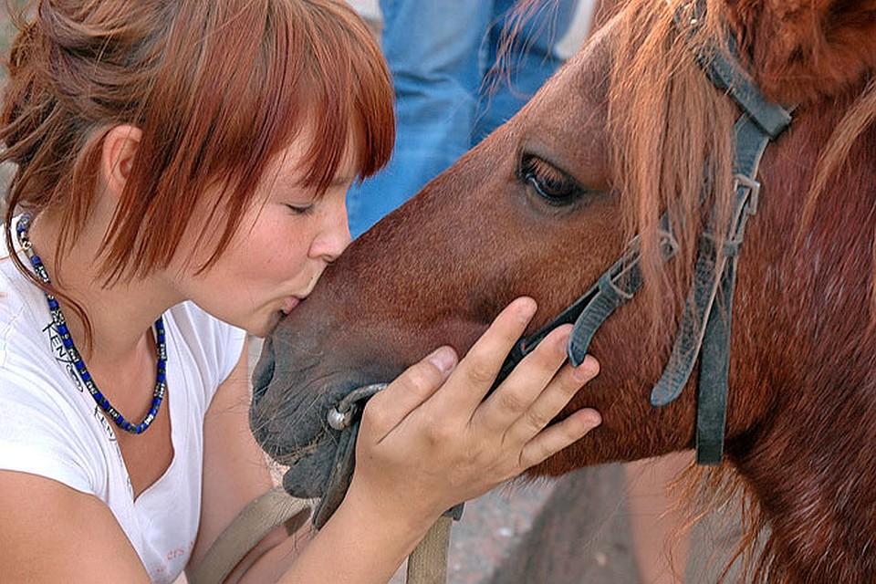 как подружится с конем только ошибиться