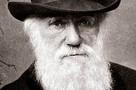 Одиннадцать проблем, с которыми столкнулся Чарльз Дарвин
