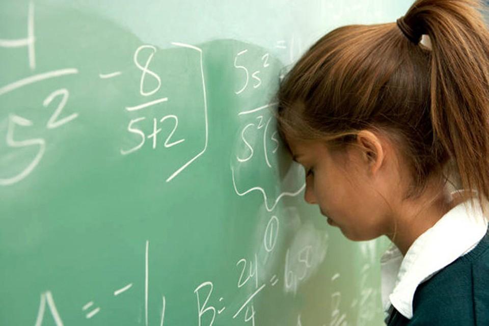Систему образования Беларуси подвергнут анализу.