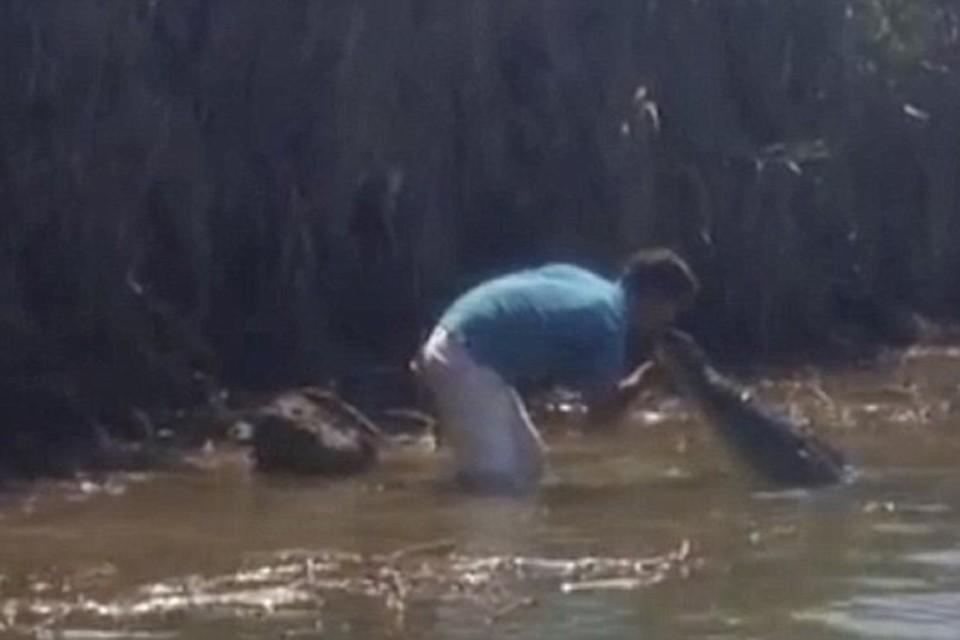 Костариканец зашел в воду, чтобы расцеловаться с огромным крокодилом Фото: кадр из видео
