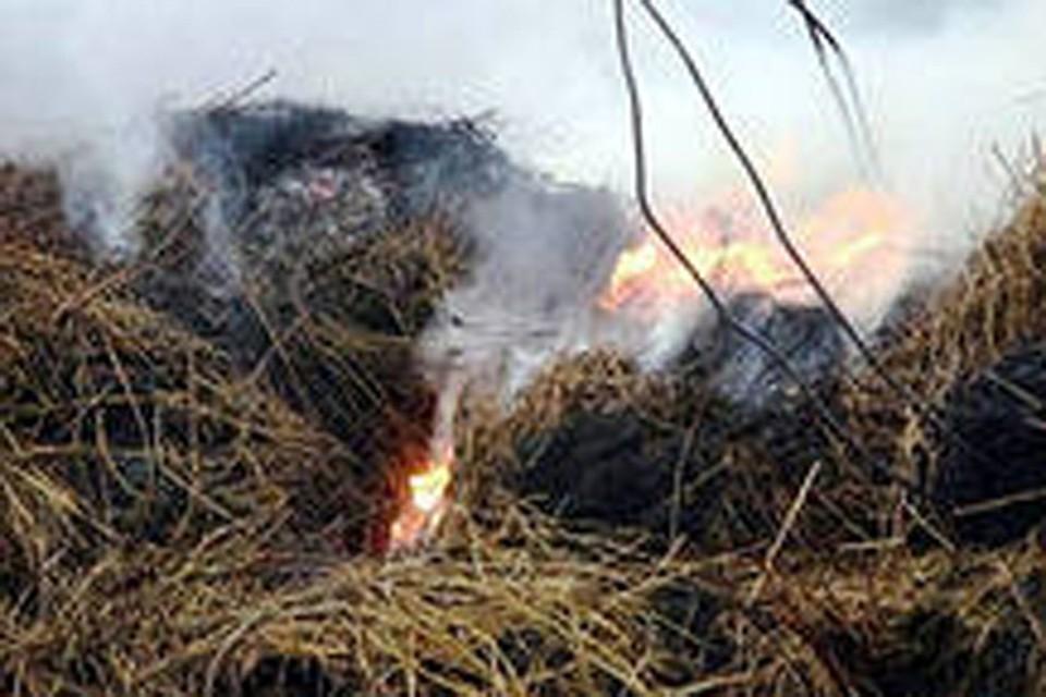 Лесные пожары из Забайкальского края добрались до Бурятии .