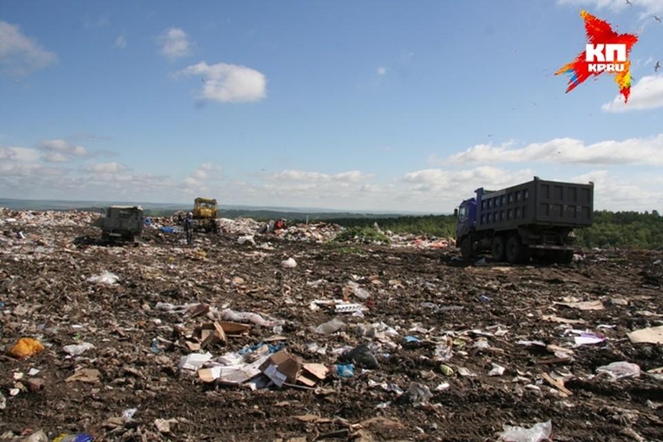 Охота на мусор в Иркутске: что ценного находят на городских свалках