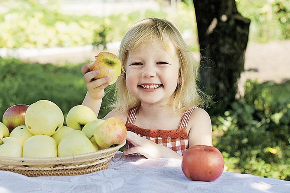 Растениям нужно три основных элемента питания: азот, фосфор и калий.