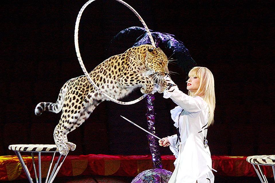 картинки артисты цирка животные дербента есть