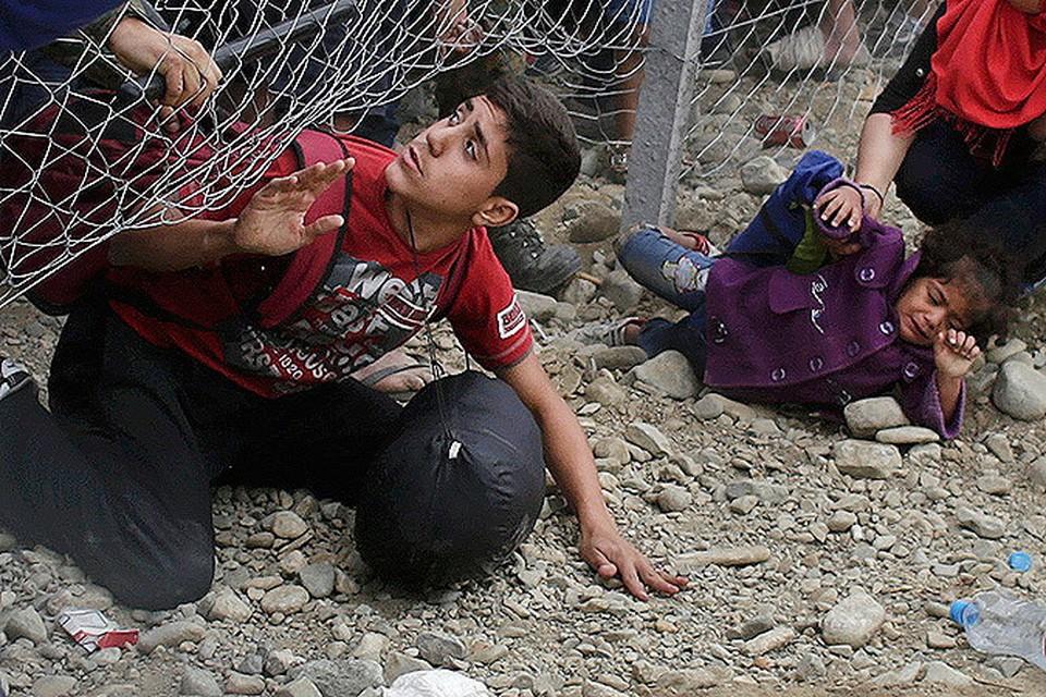 Как ведут себя мигранты в Европе и кто ими управляет