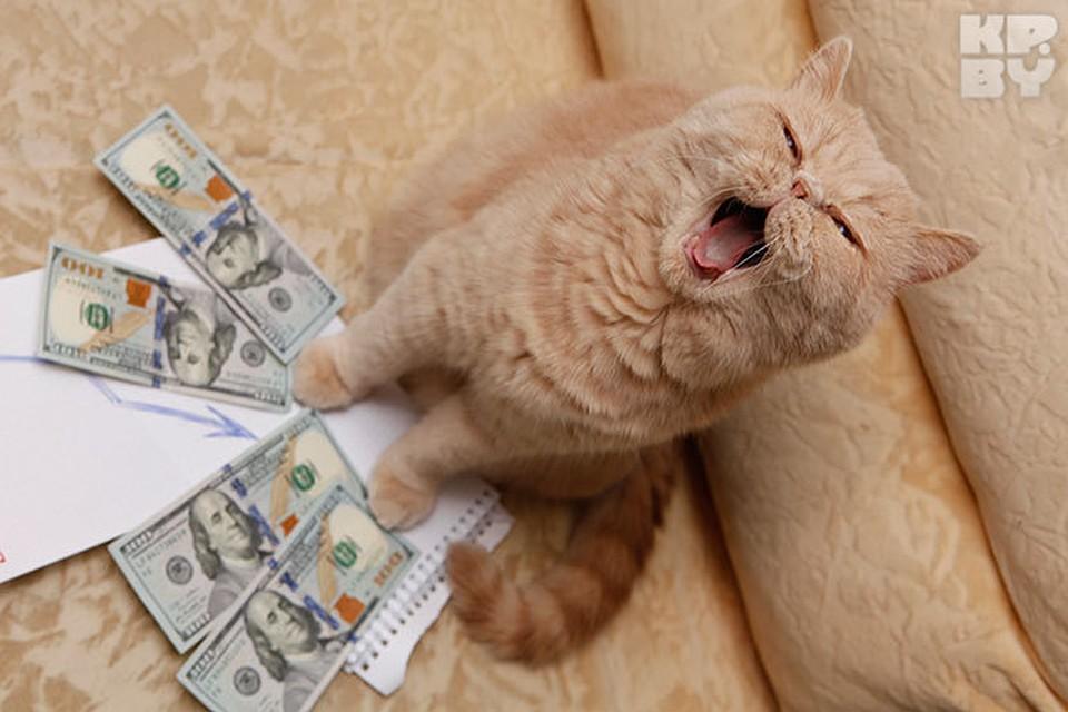 кредит онлайн на карточку деньги
