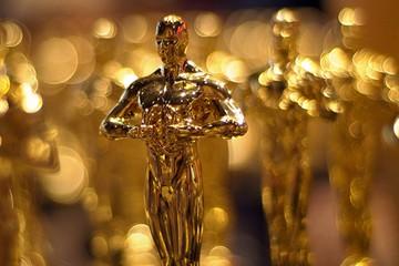 Стулья с претензией на «Оскар»!