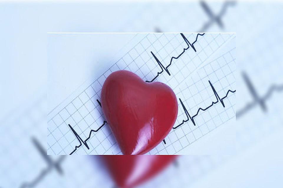 Интересный реферат о сердце 7183