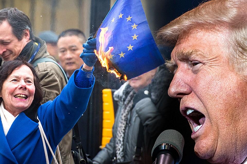Победа Дональда Трампа и Brexit шокировали большинство жителей планеты. Но только не тех, кто читал «Гид пессимиста» на 2016 год от агентства Bloomberg.