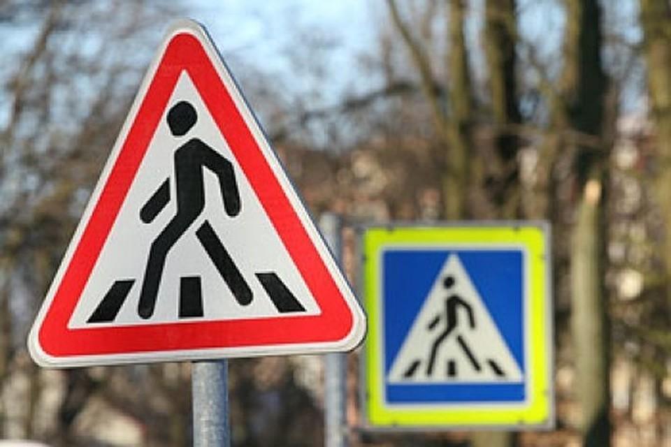 В Курске ребёнок переходил дорогу не по