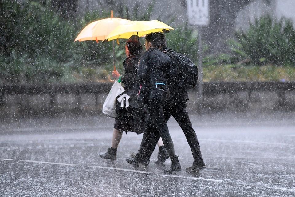 Проливные дожди начались на востоке Австралии, что вызвало надежды властей на улучшение ситуации с непрекращающимися с осени прошлого года мощными пожарами