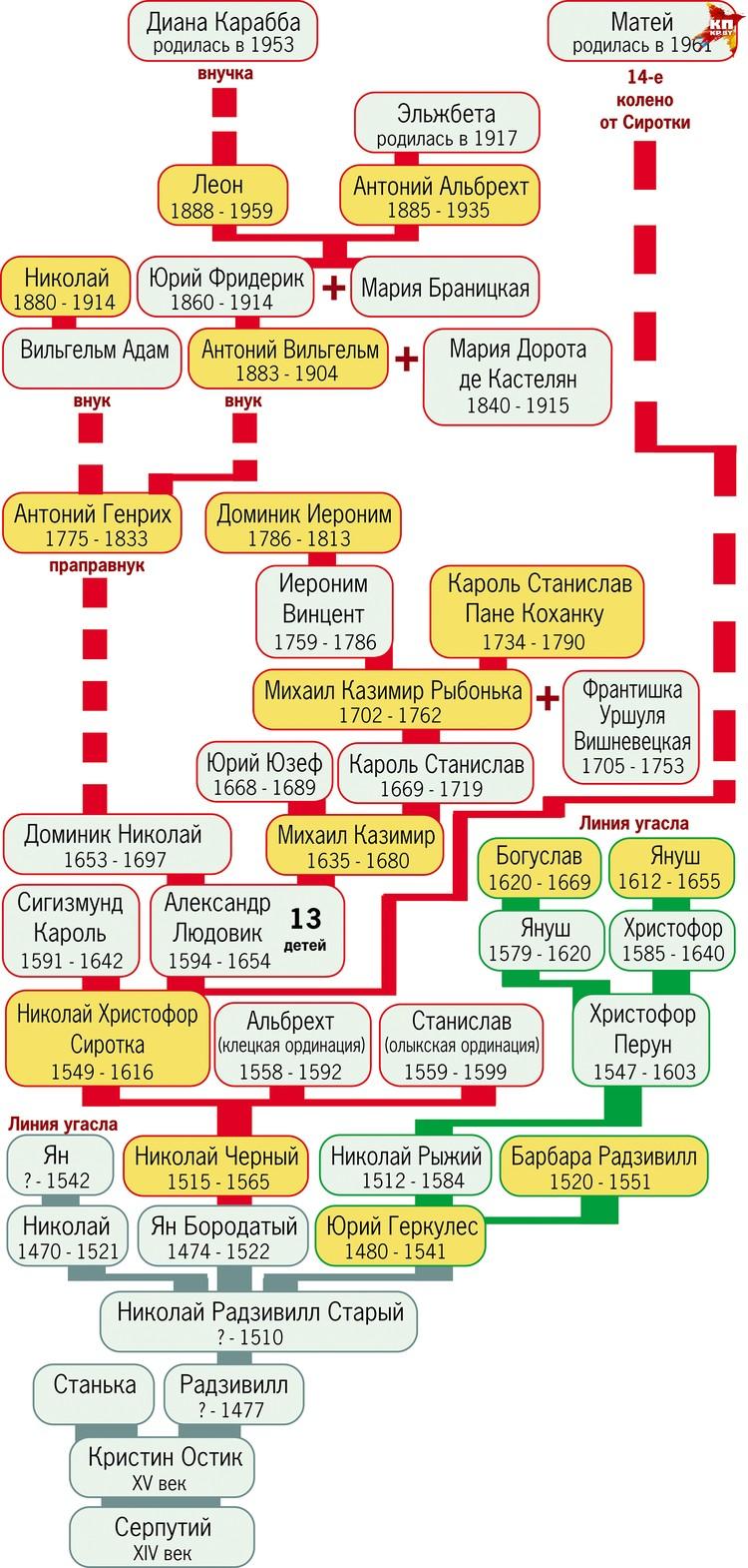 Генеологическое дерево рода Радзивилов.