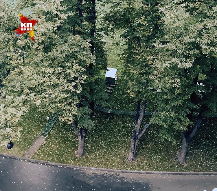 В этих домиках под Кремлевской стеной живут кремлевские хищники сокол Альфа, его друзья соколы и филин.