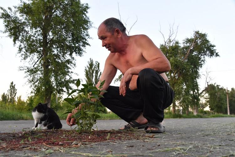 Местный житель Илья Петров поливает цветы, которые он выращивает в воронке от мины прямо посреди дороги. Этой «клумбе» уже три года