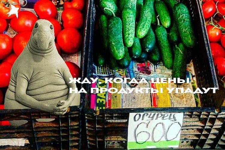 Около 600-700 рублей под Новый год стоили огурцы на полуострове на рынках.