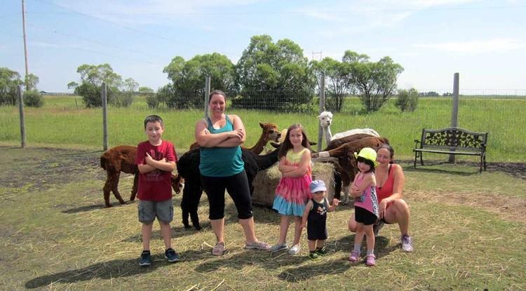 Больше всего альпака нравится то, что женщины приходят на тренировки со своими детьми Фото: Facebook @313Farms