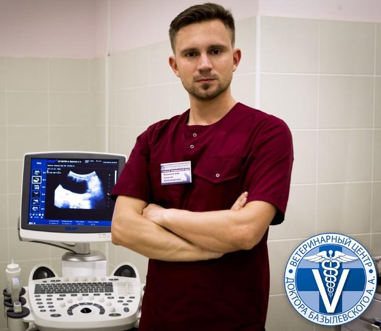 Профессионалы ветеринарного центра доктора Базылевского полностью отдаются своей работе.