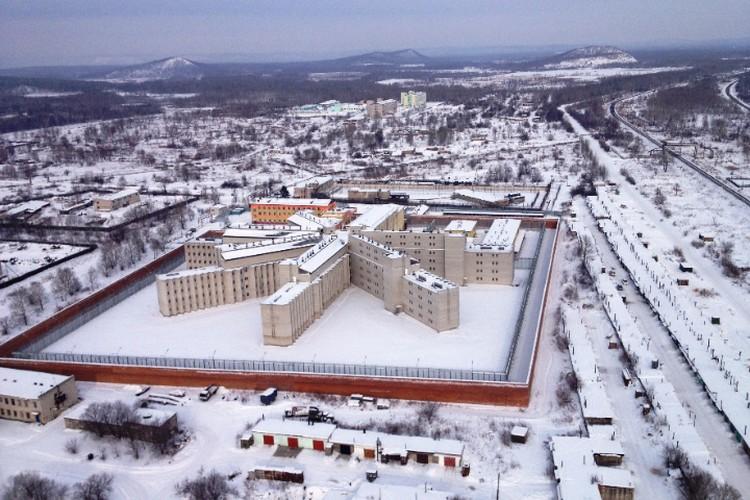 Колючая «Снежинка» Хабаровского края