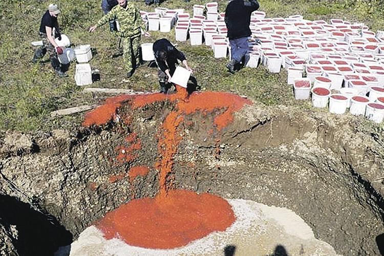 Утилизация браконьерской красной икры выглядит не меньшим варварством, чем само браконьерство. Фото: МВД России по Камчатскому краю