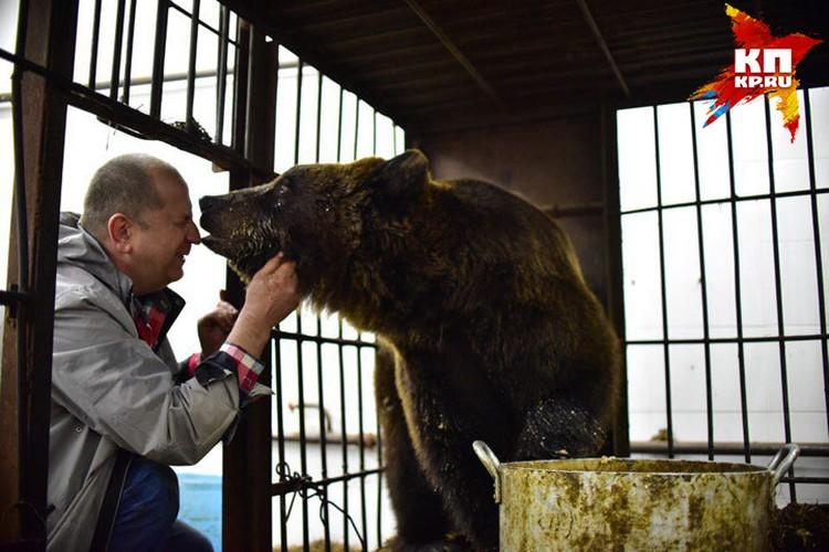 Зимой к Анатолию приезжали иностранцы. Шведы и французы посмотрели на домашнюю медведицу и потом написали в своих инстаграмах, что в Сибири медведи в каждом дворе вместо собак в будках сидят