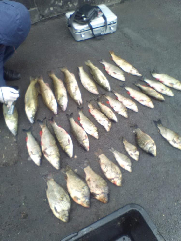 В Липецкой области поймали браконьеров