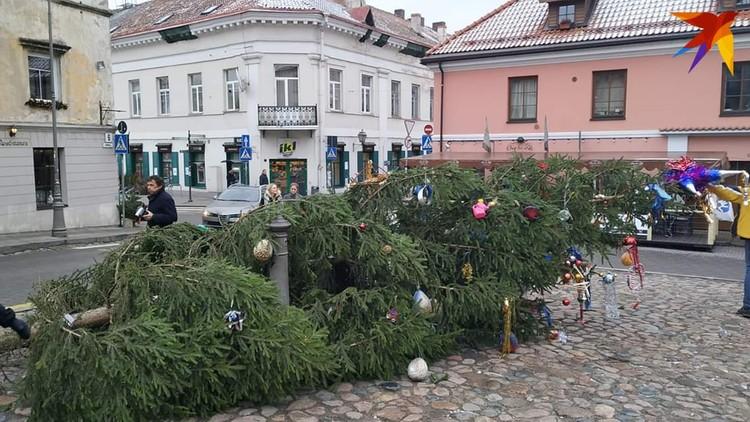 Одна из елок Вильнюса.
