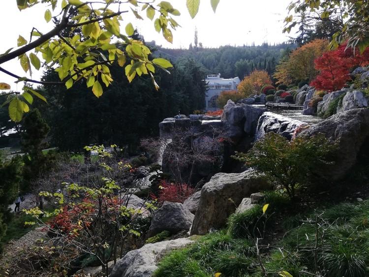 Японский сад официально открыли для посетителей в конце ноября 2018 года.