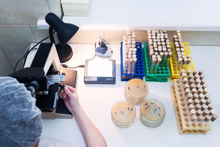 Микробиологическая лаборатория – редкость для молочных заводов, но необходимость для производства пробиотиков. Это гарантия качества и чистоты продукта. А значит, и пользы для здоровья!