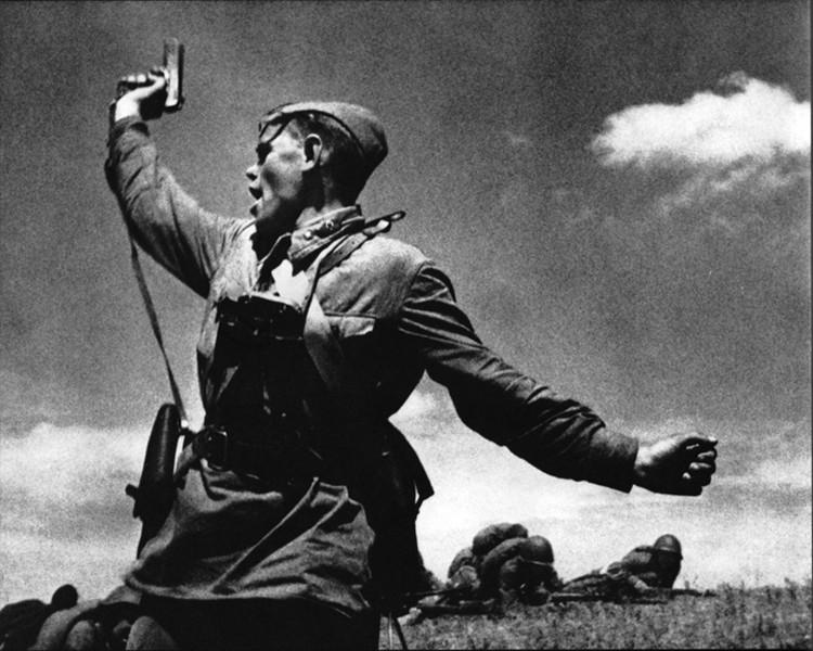 Комбат. Фото: Максим Альперт