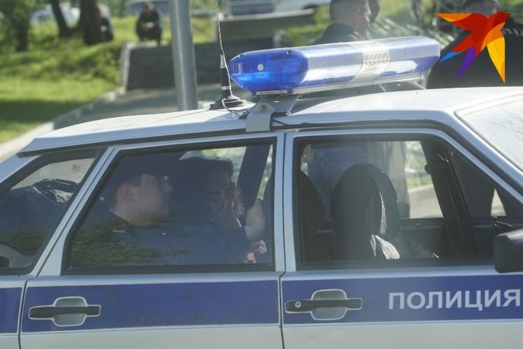 После того, как Эльвира сняла противоугонную цепочку от велосипеда, ее посадили в патрульный автомобиль.