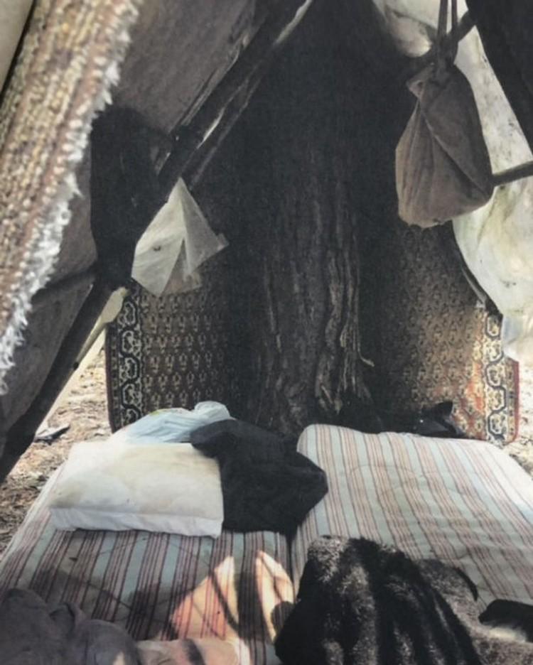 В таком шалаше в лесу жил мужчина. Фото: УВД