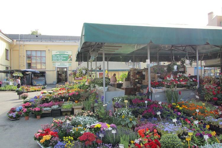 """Одной из местных """"достопримечательностей"""" считался большой цветочный базар. Фото: cityguide-spb.ru"""