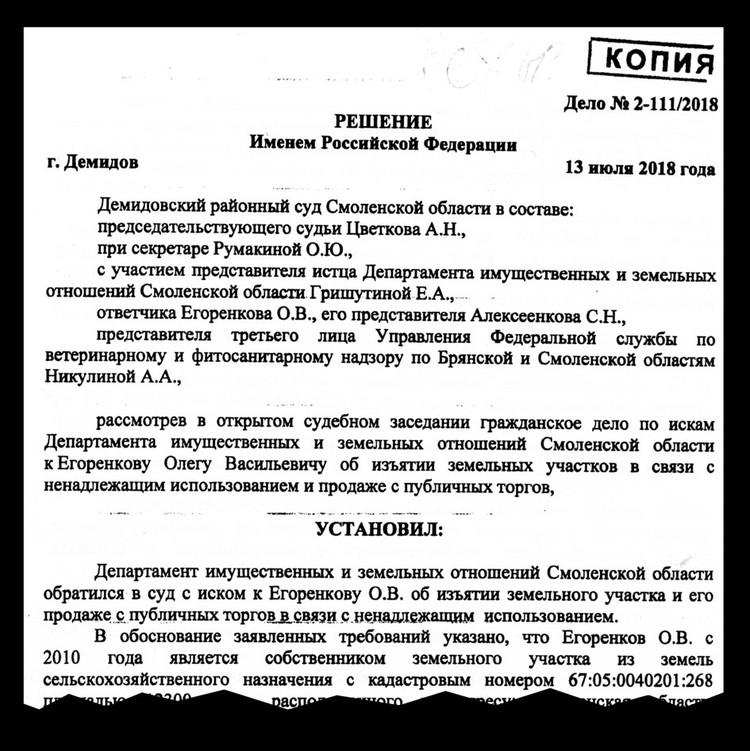 За несколько лет спора с государством энтузиаст прошел около сотни судов, потратив на это почти миллион рублей.